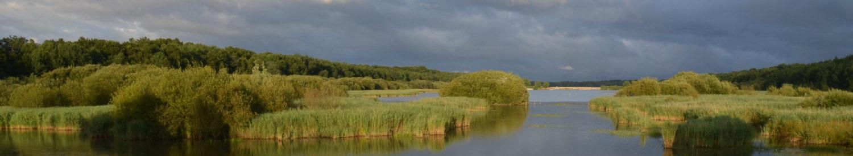 Site des Yvelines